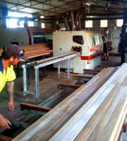 spotted gum timber cutting