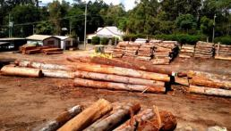 certified timber suppliers South Brisbane timber yard