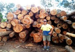 Timber Sunshine Coast - man infront of wood