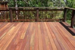 spotted gum timber Brisbane