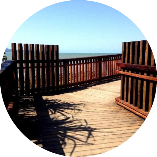 Buy Trex decking Sunshine Coast beach deck