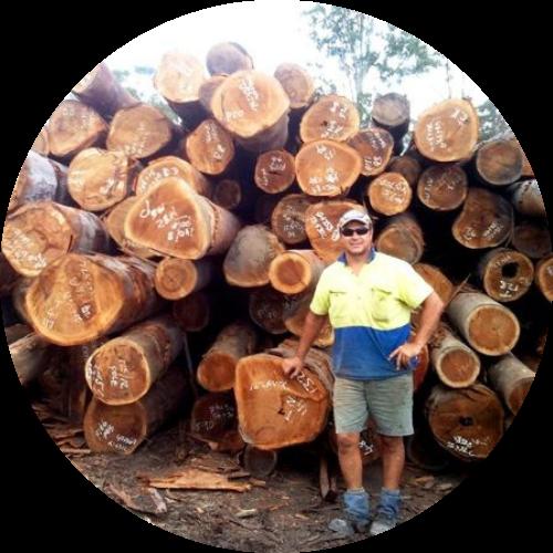 timber sleepers - Cut wood