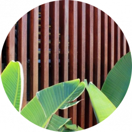 hardwood timber suppliers - timber fence and leaves