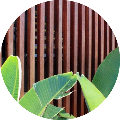 hardwood timber supplies sunshine coast - timber fence and leaves